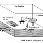 Quản lý đất đai